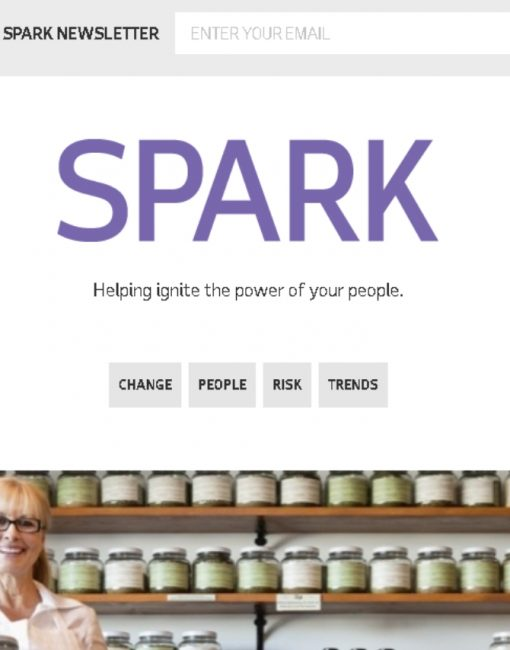 Articles written for the SPARK Blog